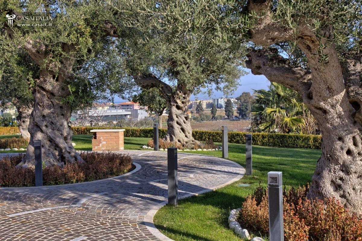 Abruzzo vendita villa di pregio sul mare - Giardino con ulivi ...