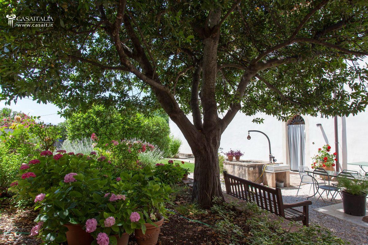 Porzione di villa con giardino e dependance in vendita a trevi - Alberi da giardino di piccole dimensioni ...