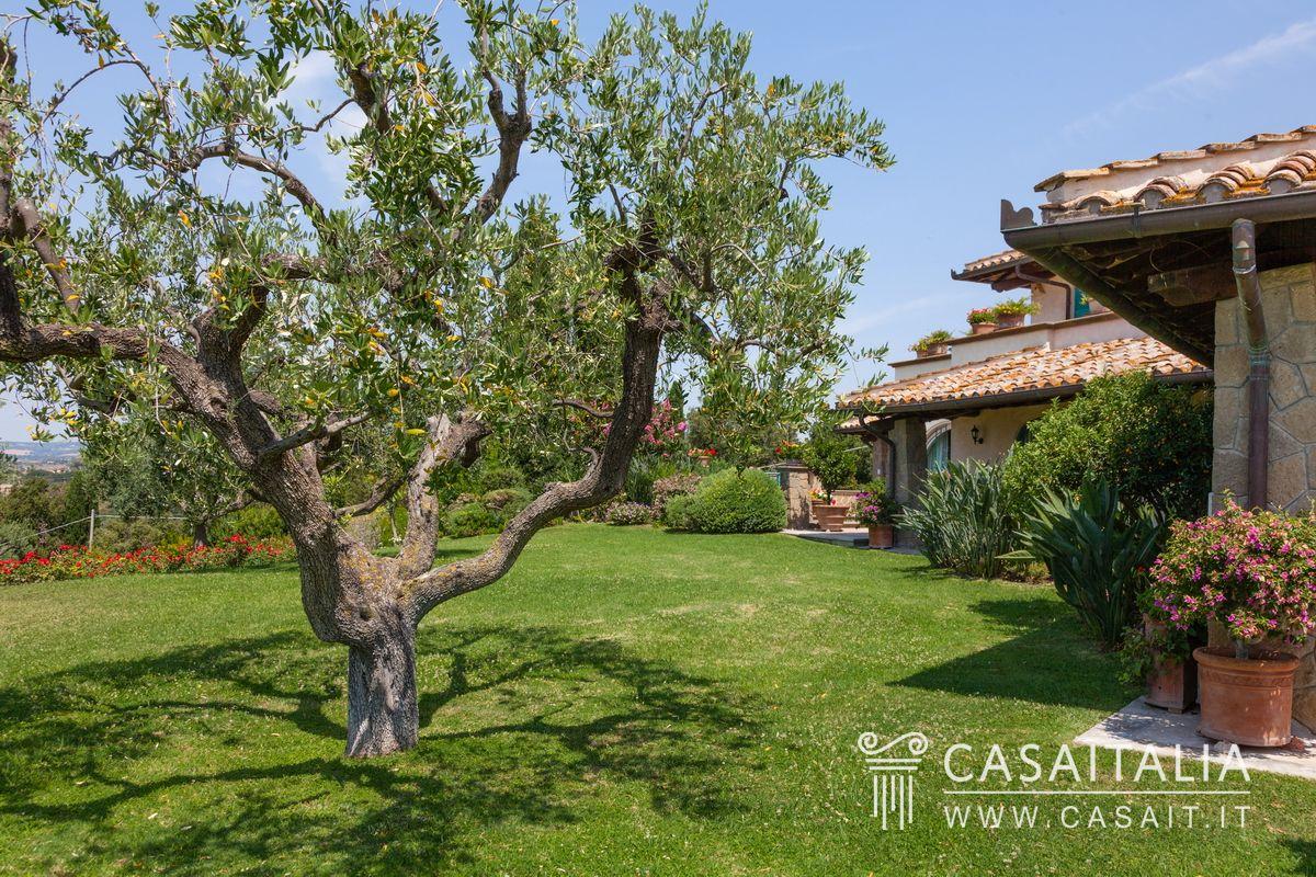 Villa di lusso in vendita a cerveteri - Giardino con ulivi ...