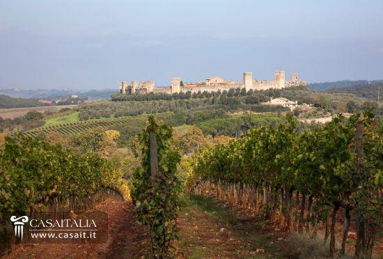 Matrimonio Azienda Vinicola Toscana : Toscana azienda vinicola in vendita